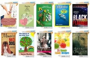 10_Free_Kindle_Books_11-16-13
