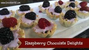 Raspberry Chocolate Delights