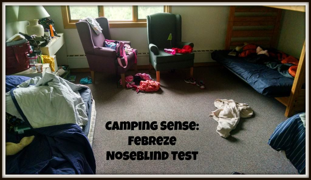 Febreeze Noseblind