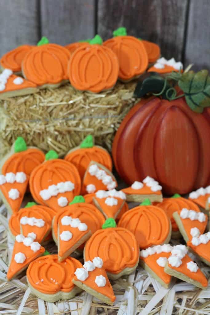 pumpkin mini 5-2