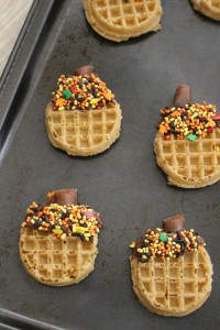 Acorn Waffles 1-3