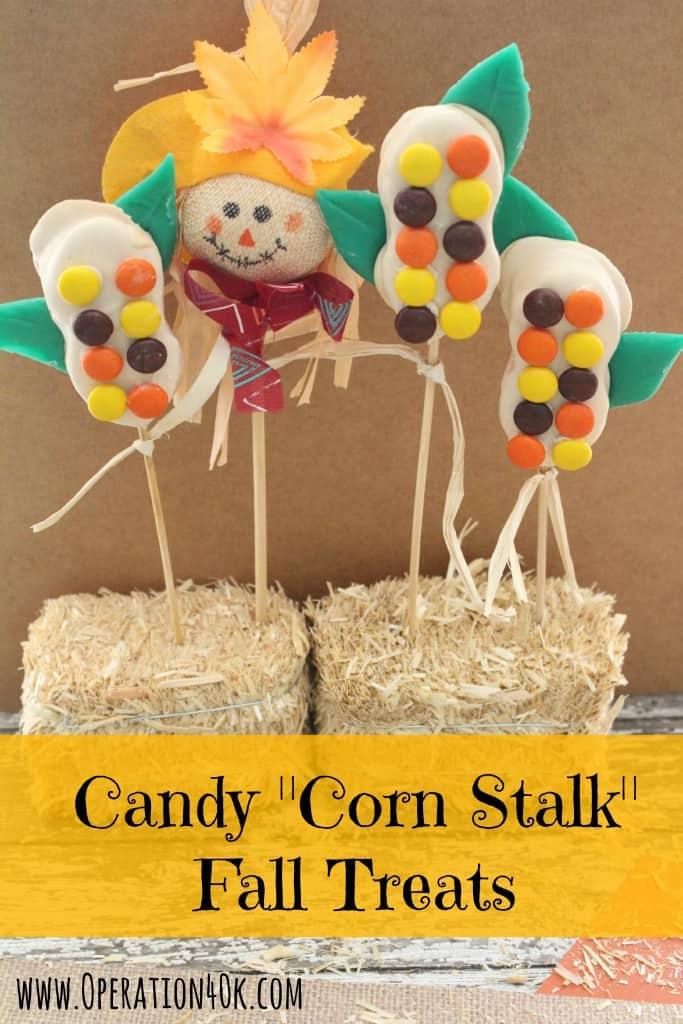 Corn Stalks Operaation 40K