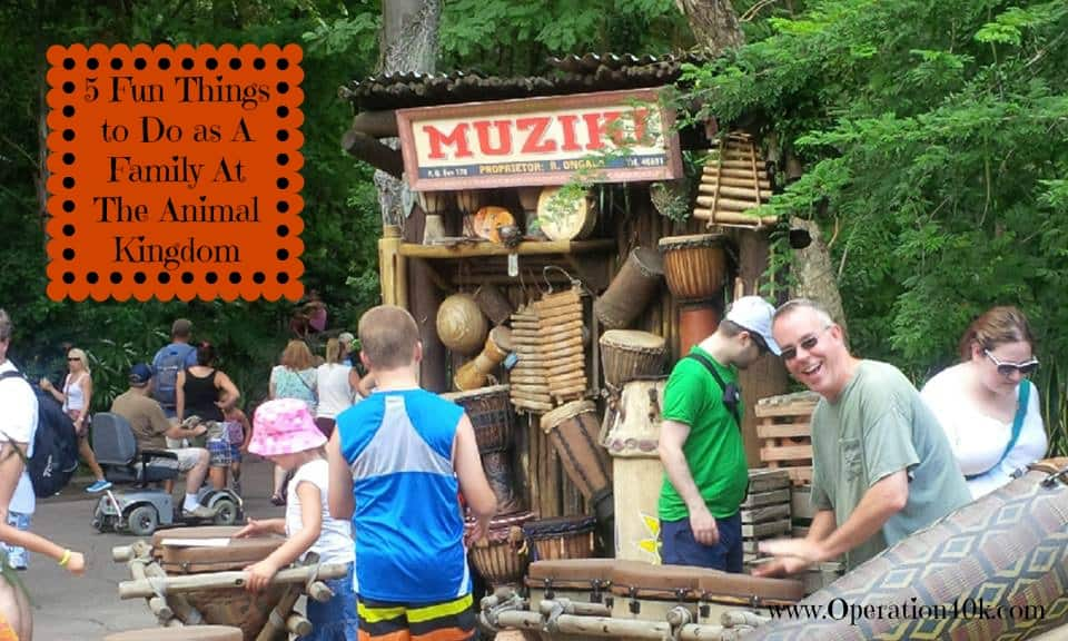 5 Fun Things to Do as A Family At The Animal Kingdom by www.Operation40k.com