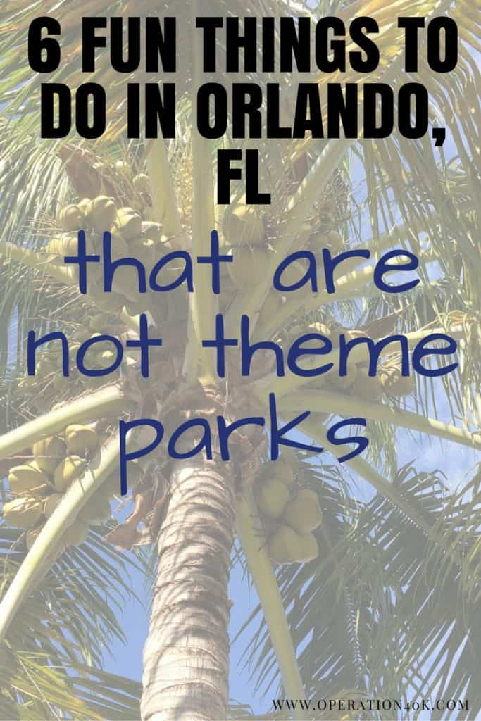 6 Fun Things To Do In Orlando That Are Not Theme Parks