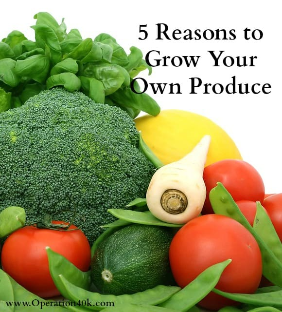 reasons to grow your own produce