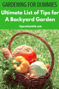 Don't miss these Ultimate Gardening for Dummies Tips for a Backyard Garden! These are ideal for the new gardener to help get on track this summer!