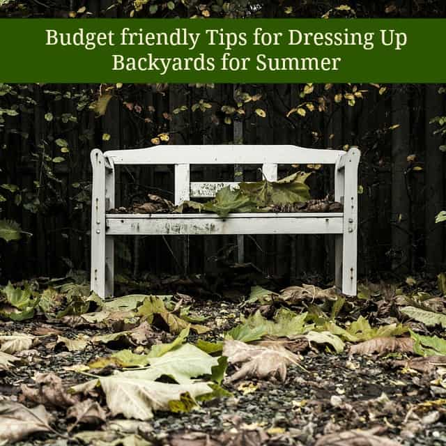 budget friendly tips for dressing up backyard for summer