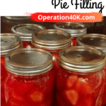 How to can strawberry pie filling article cover image