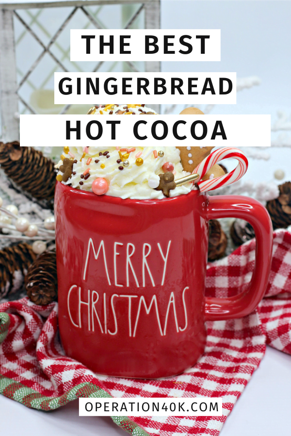 Gingerbread Hot Cocoa is Perfect for Winter