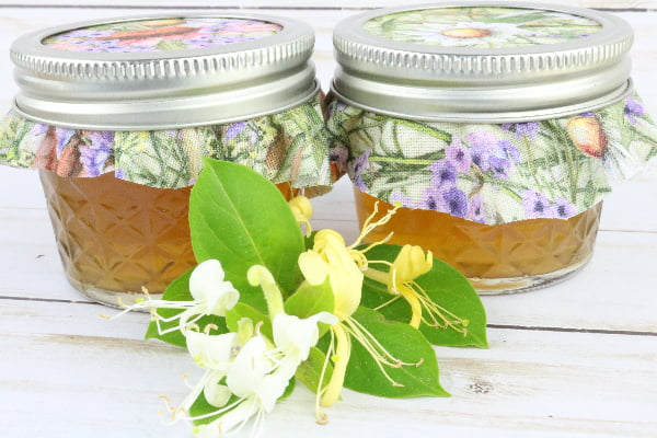 The Best Honeysuckle Jelly Recipe For Canning