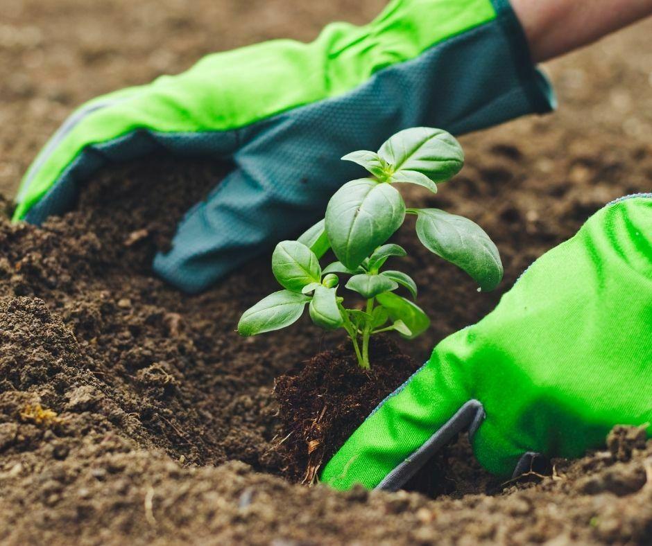 gardening or landscaping